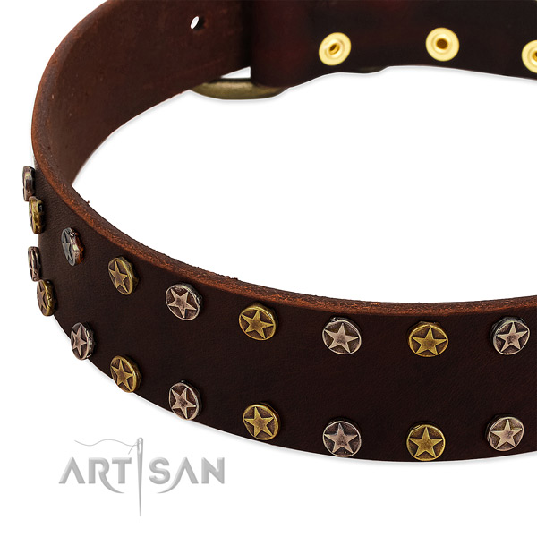 Handy use leather dog collar with unique adornments