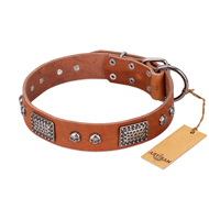 """Sparkling Skull"" FDT Artisan Tan Leather Doberman Collar with Old Silver Look Plates and Skulls"