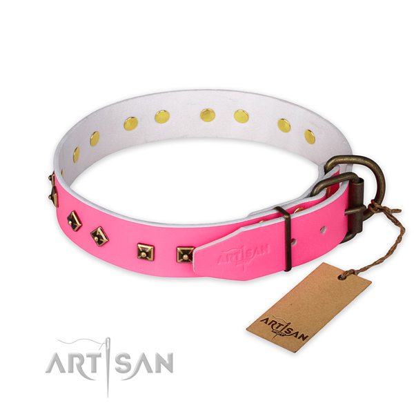 Rust resistant buckle on full grain leather collar for basic training your doggie