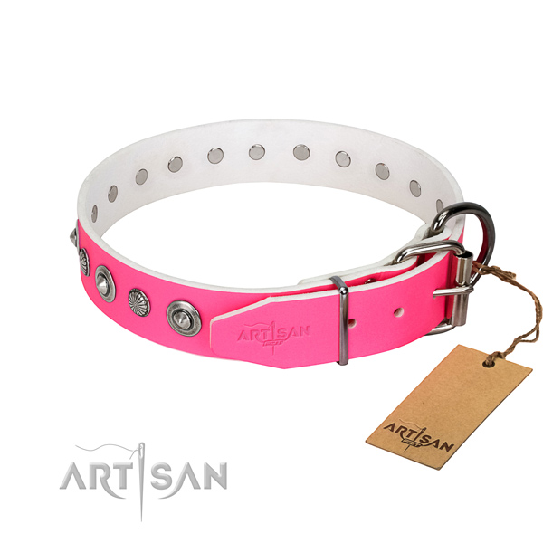 Durable full grain leather dog collar with incredible studs