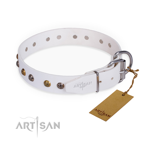 Natural leather dog collar with stylish corrosion resistant studs