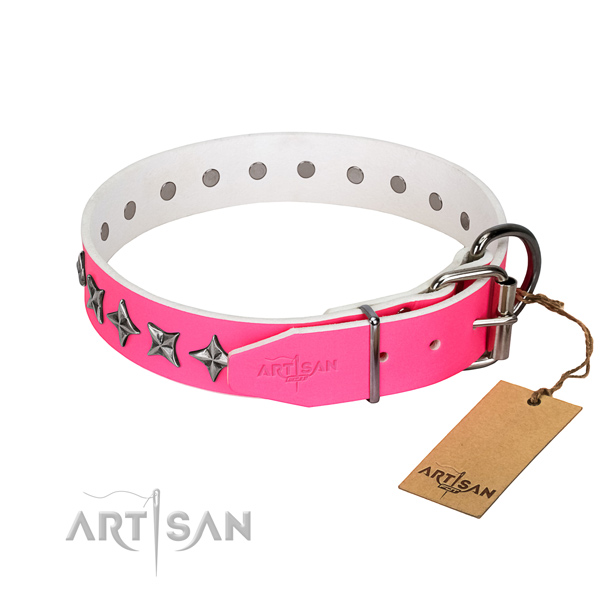 Strong full grain leather dog collar with awesome adornments