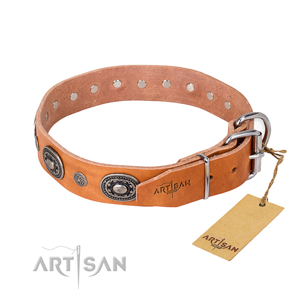 Quality full grain leather dog collar handmade for stylish walking