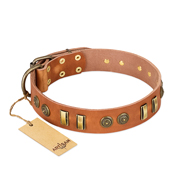 """Natural Beauty"" FDT Artisan Tan Leather Doberman Collar with Old Bronze-like Circles and Plates"
