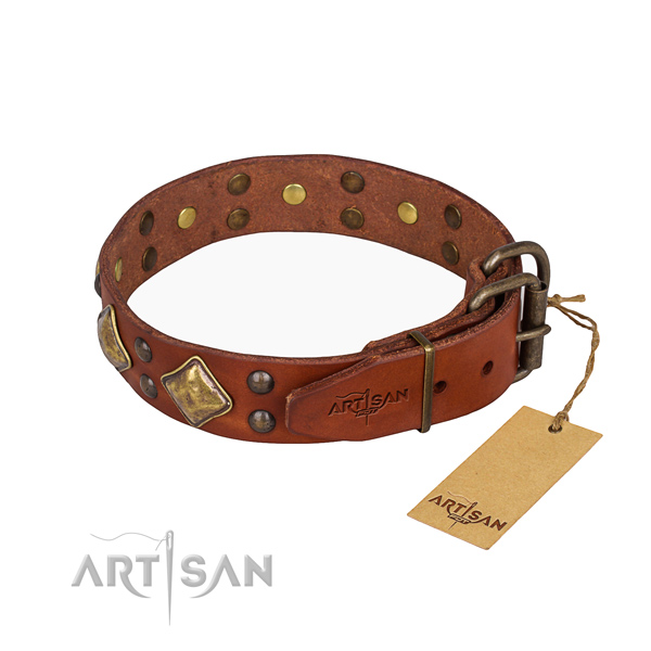 Leather dog collar with stylish design corrosion proof adornments