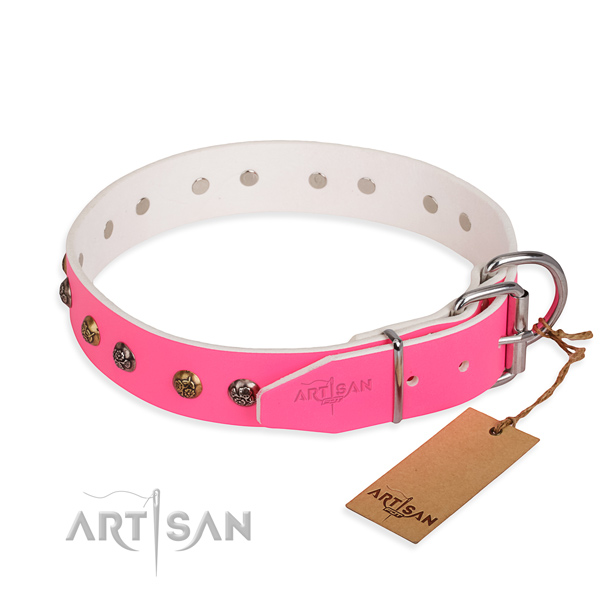 Genuine leather dog collar with incredible rust-proof studs