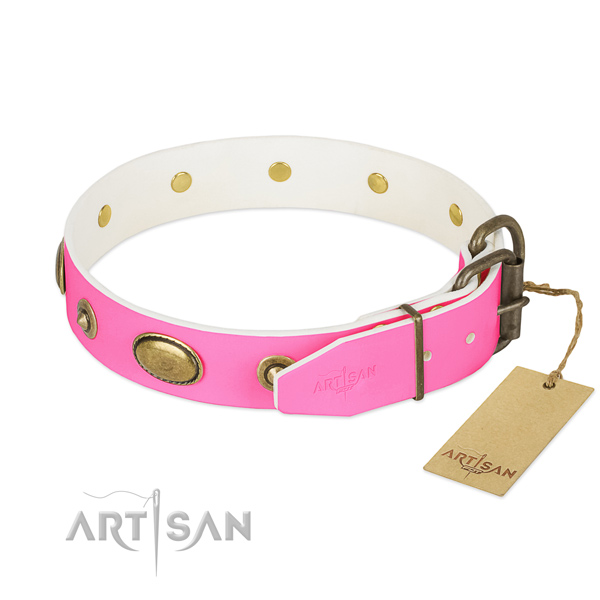 Rust-proof D-ring on leather dog collar for your canine