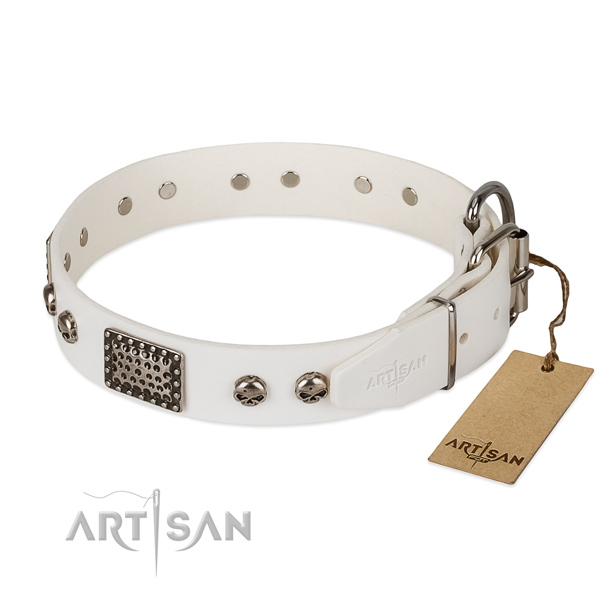 Strong buckle on handy use dog collar