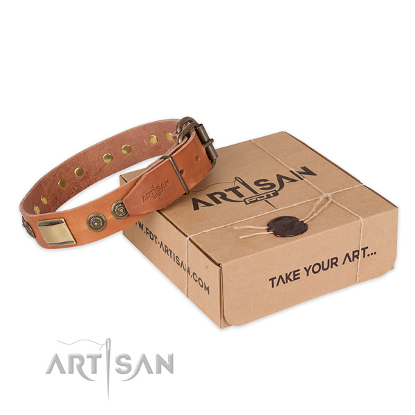 Reliable fittings on natural genuine leather dog collar for basic training