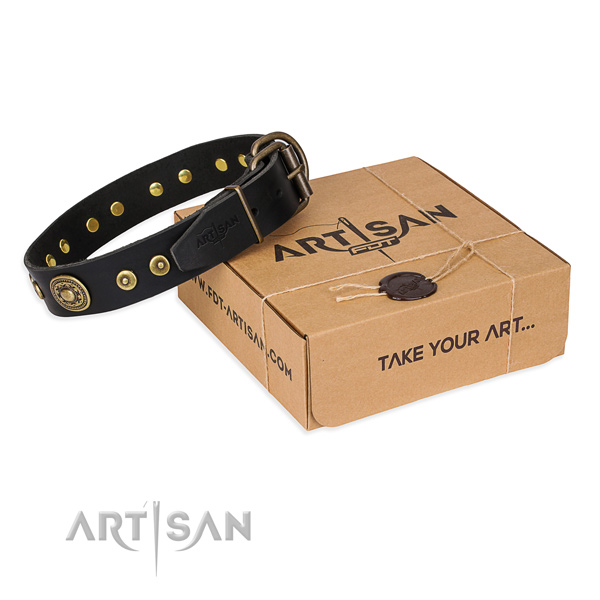 Full grain natural leather dog collar made of top notch material with corrosion resistant fittings
