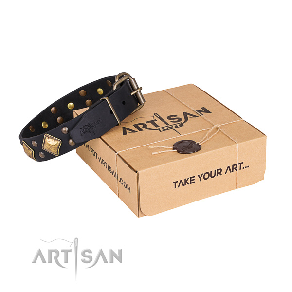 Daily walking dog collar with Exquisite reliable studs