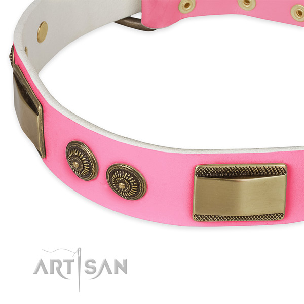 Leather dog collar with embellishments for everyday use