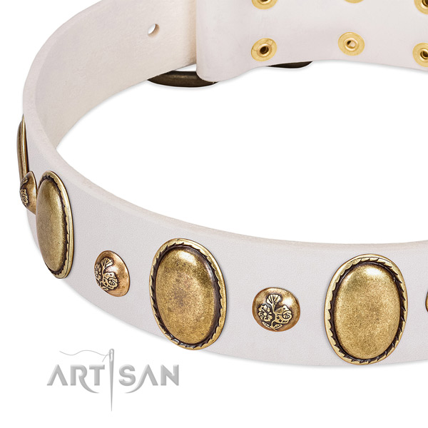 Natural leather dog collar with extraordinary decorations