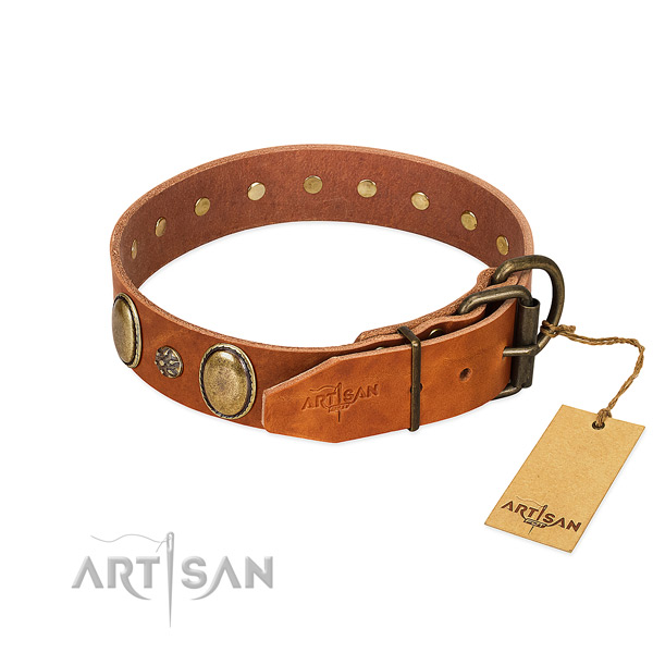 Daily use quality full grain genuine leather dog collar