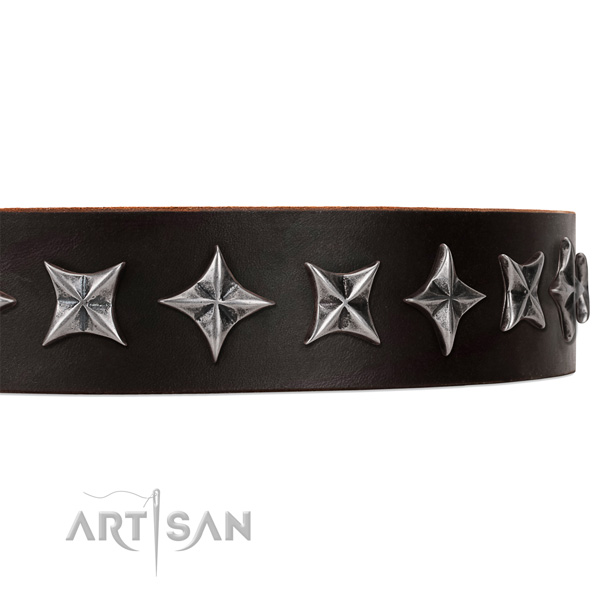 Comfy wearing decorated dog collar of strong natural leather