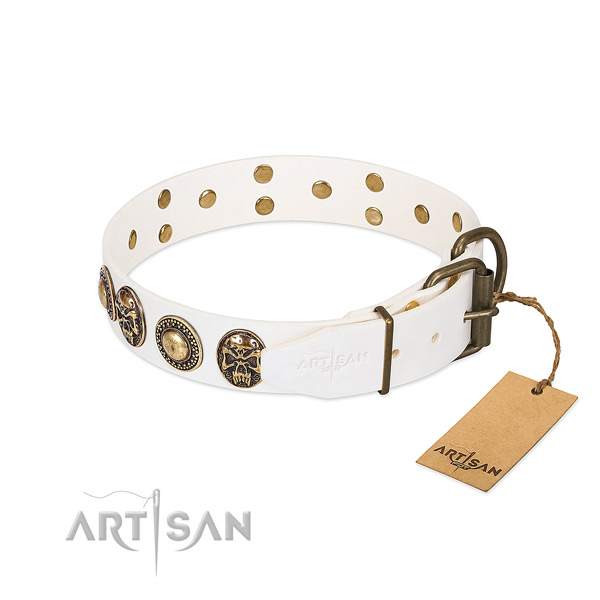 Rust-proof adornments on comfy wearing dog collar