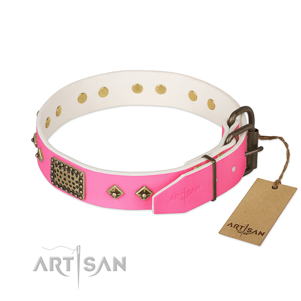 Reliable fittings on everyday use dog collar