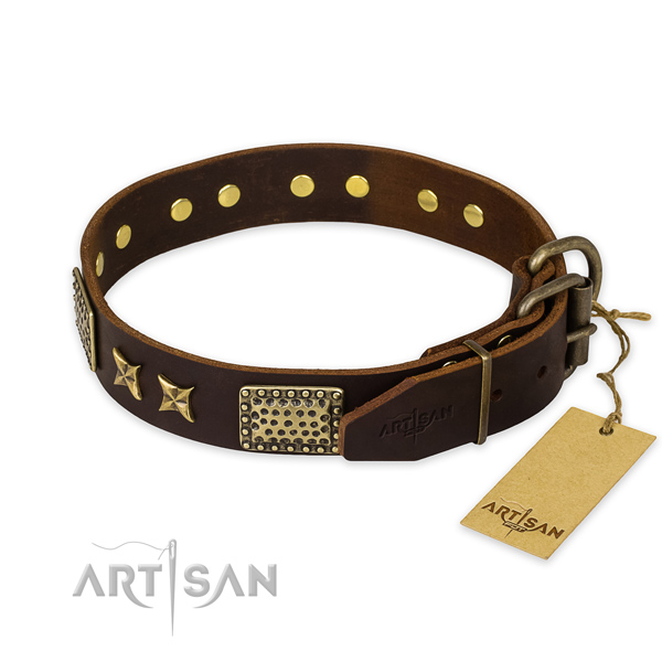 Strong traditional buckle on full grain leather collar for your stylish doggie