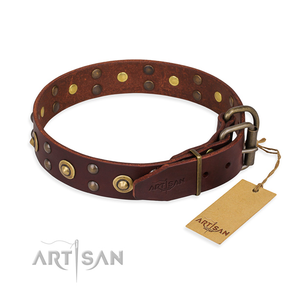 Corrosion proof fittings on full grain leather collar for your attractive pet