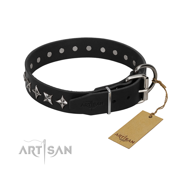 Comfortable wearing decorated dog collar of top quality leather