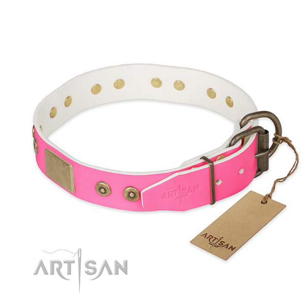Rust-proof fittings on handy use dog collar