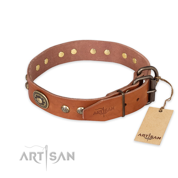 Strong buckle on full grain natural leather collar for stylish walking your canine