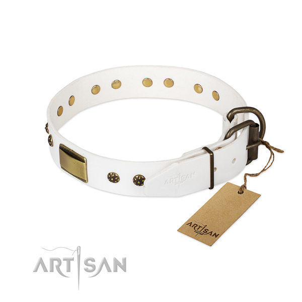 Full grain natural leather dog collar with rust-proof D-ring and studs