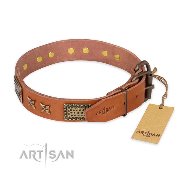 Corrosion resistant fittings on leather collar for your lovely dog