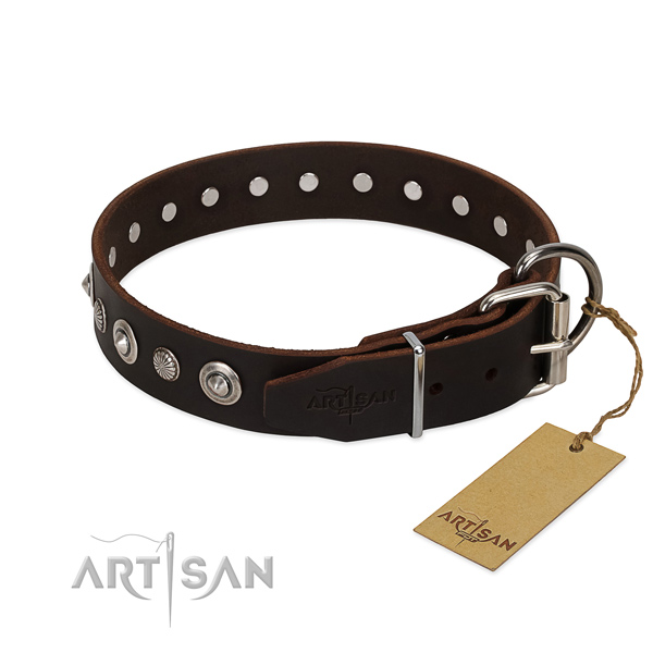 Strong full grain natural leather dog collar with trendy adornments
