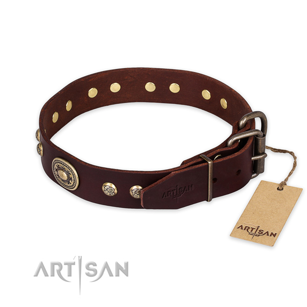 Reliable traditional buckle on full grain natural leather collar for fancy walking your dog