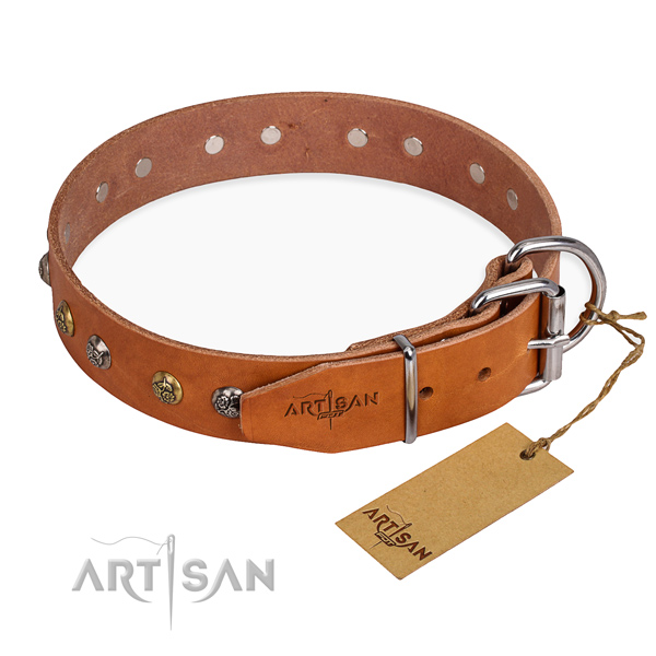 Full grain natural leather dog collar with awesome rust resistant embellishments