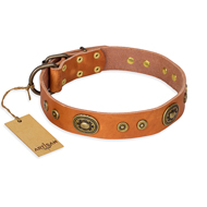 """Dandy Pet"" FDT Artisan Handcrafted Tan Leather Doberman Collar"