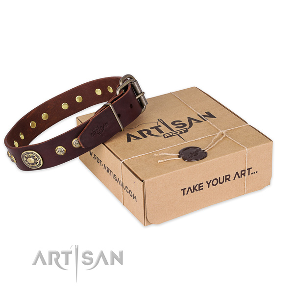 Rust-proof D-ring on leather dog collar for comfortable wearing