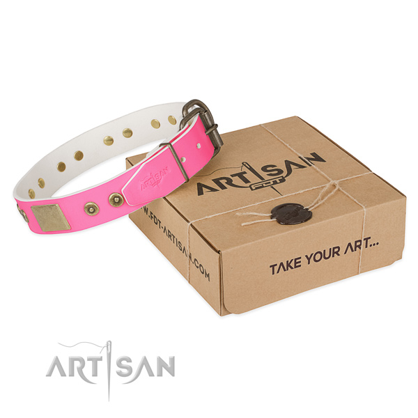 Rust-proof adornments on dog collar for easy wearing