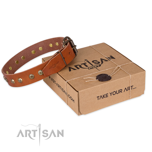 Strong hardware on genuine leather collar for your lovely doggie
