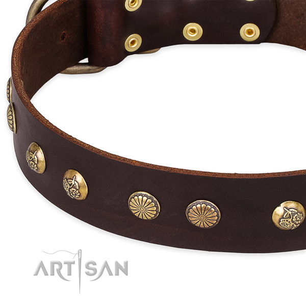Full grain leather collar with rust-proof D-ring for your lovely four-legged friend