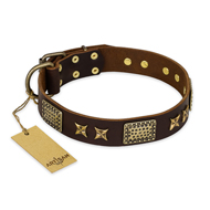 """Sparkling Bronze"" FDT Artisan Genuine Leather Doberman Collar with Bronze Look Stars and Plates"