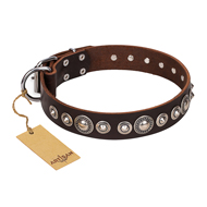 """Step and Sparkle"" FDT Artisan Glamorous Studded Brown Leather Doberman Collar"