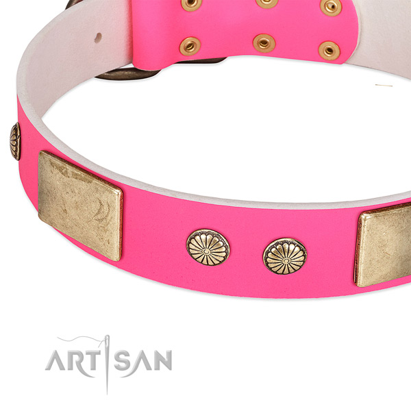 Corrosion resispinkt embellishments on leather dog collar for your canine