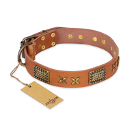 """Cosmic Traveller"" FDT Artisan Adorned Leather Doberman Collar with Old Bronze-Plated Stars and Plates"