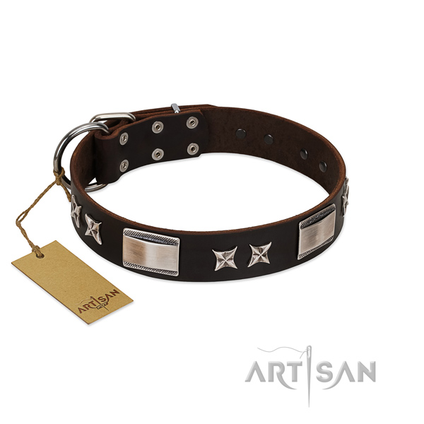 Stylish dog collar of natural leather