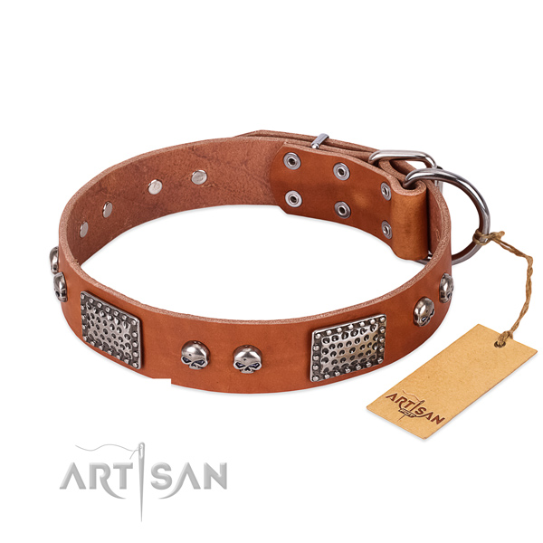 Easy adjustable leather dog collar for basic training your dog