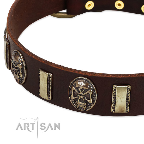 Strong studs on full grain natural leather dog collar for your four-legged friend