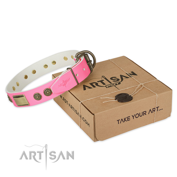 Durable traditional buckle on dog collar for walking