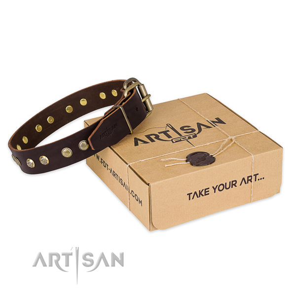 Rust resistant buckle on genuine leather collar for your stylish four-legged friend