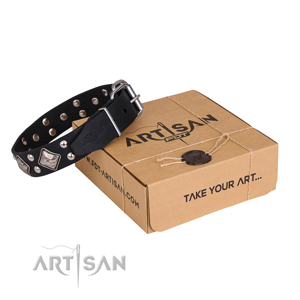Stylish walking dog collar with Impressive reliable decorations