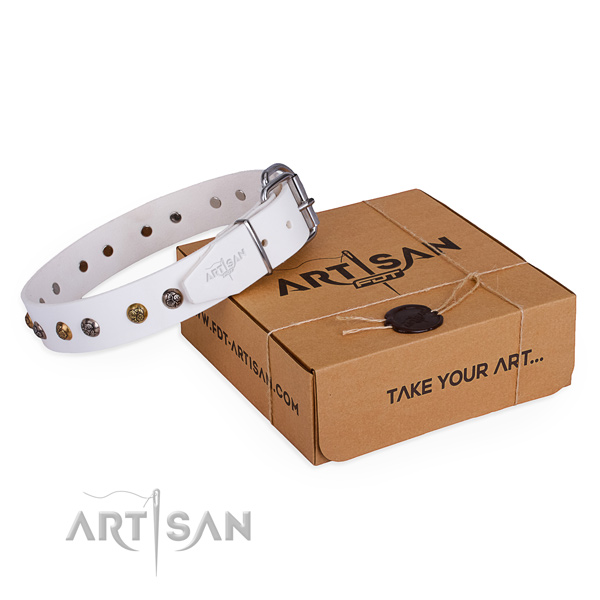 Stylish walking dog collar with Amazing corrosion resistant studs
