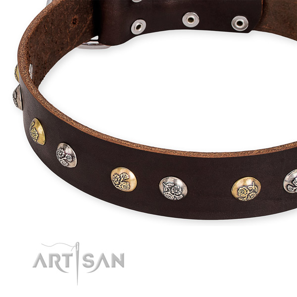 Full grain natural leather dog collar with unusual corrosion resistant embellishments