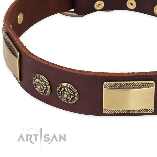 Corrosion resistant traditional buckle on full grain genuine leather dog collar for your four-legged friend