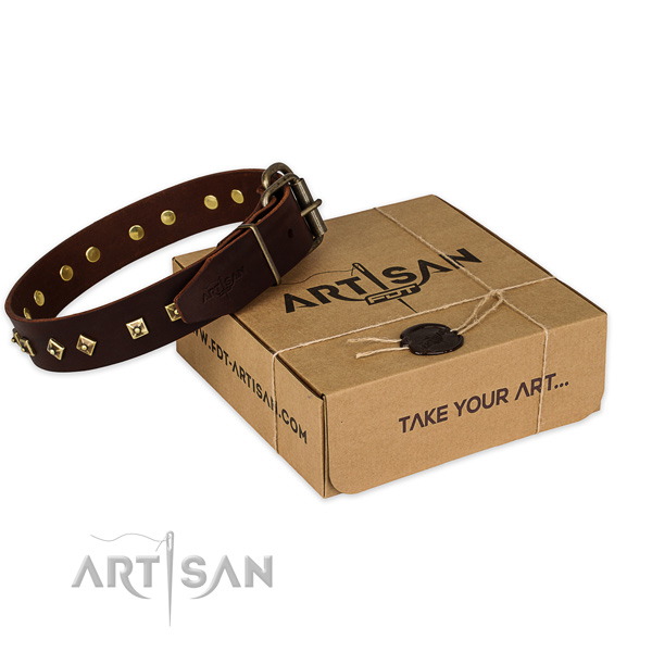 Durable hardware on full grain natural leather dog collar for daily walking